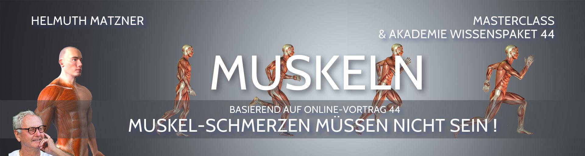 Helmuth Matzner - Masterclass & Akademie Wissenspaket 44 - Muskeln - Banner 1D2