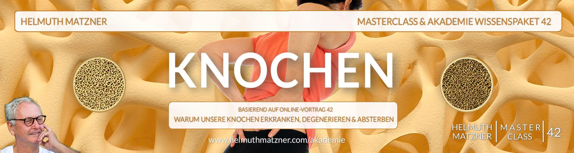 Helmuth Matzner - Masterclass & Akademie Wissenspaket 42 - Knochen - Web Header v1F3