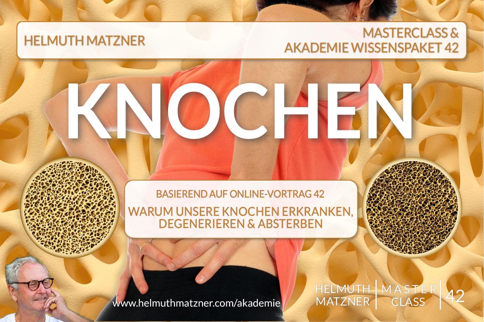Helmuth Matzner - Masterclass & Akademie Wissenspaket 42 - Knochen - Akademie Banner v5B2