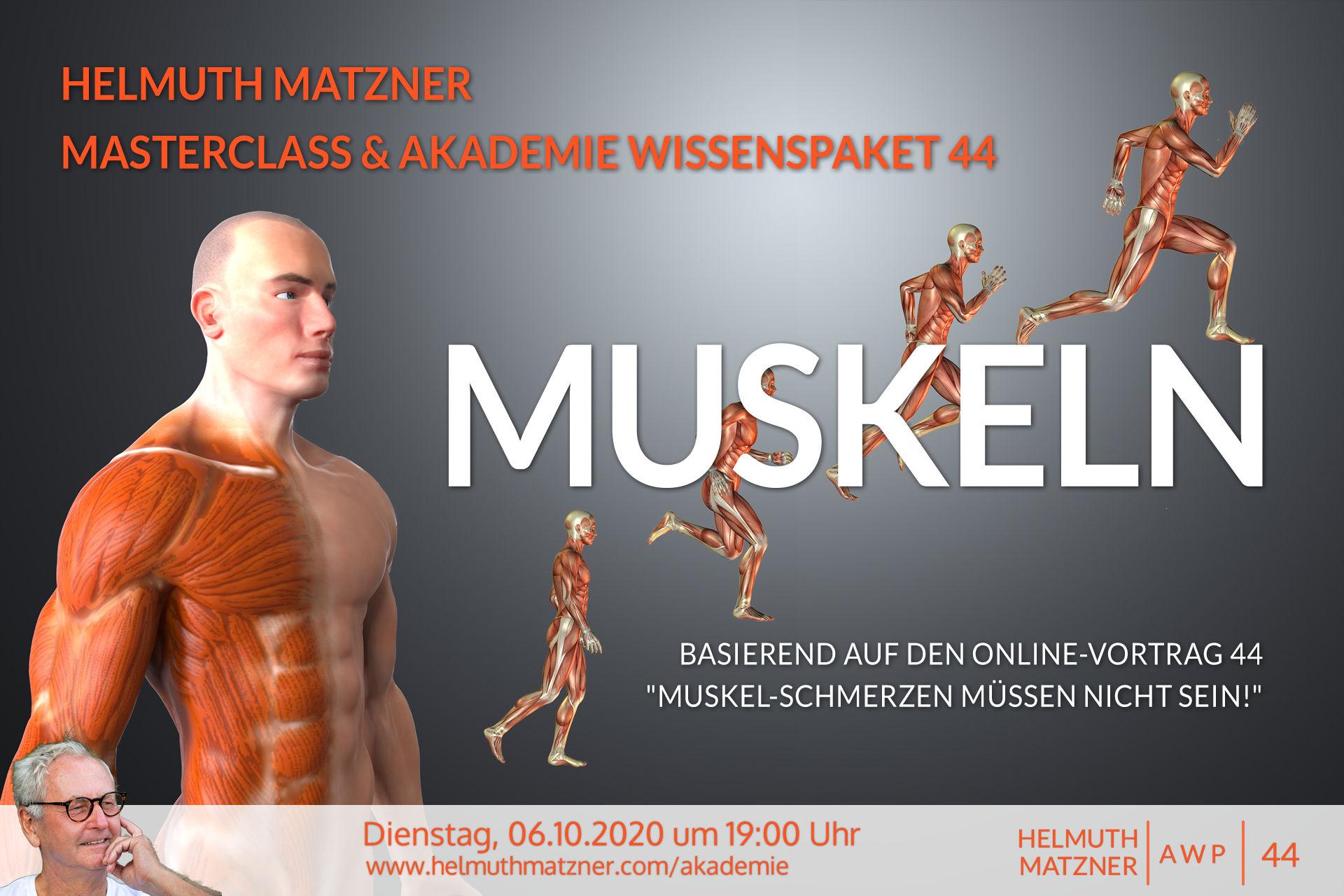 Helmuth Matzner - Masterclass & Akademie Wissenspaket 44 - Muskeln - Banner v11B2