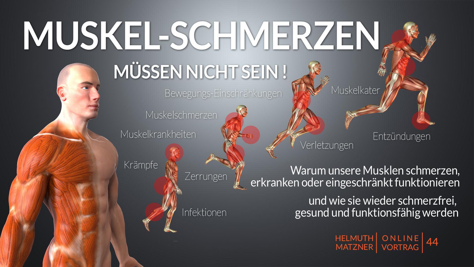 Helmuth Matzner - Online-Vortrag 44 - Muskeln - Archiv v07