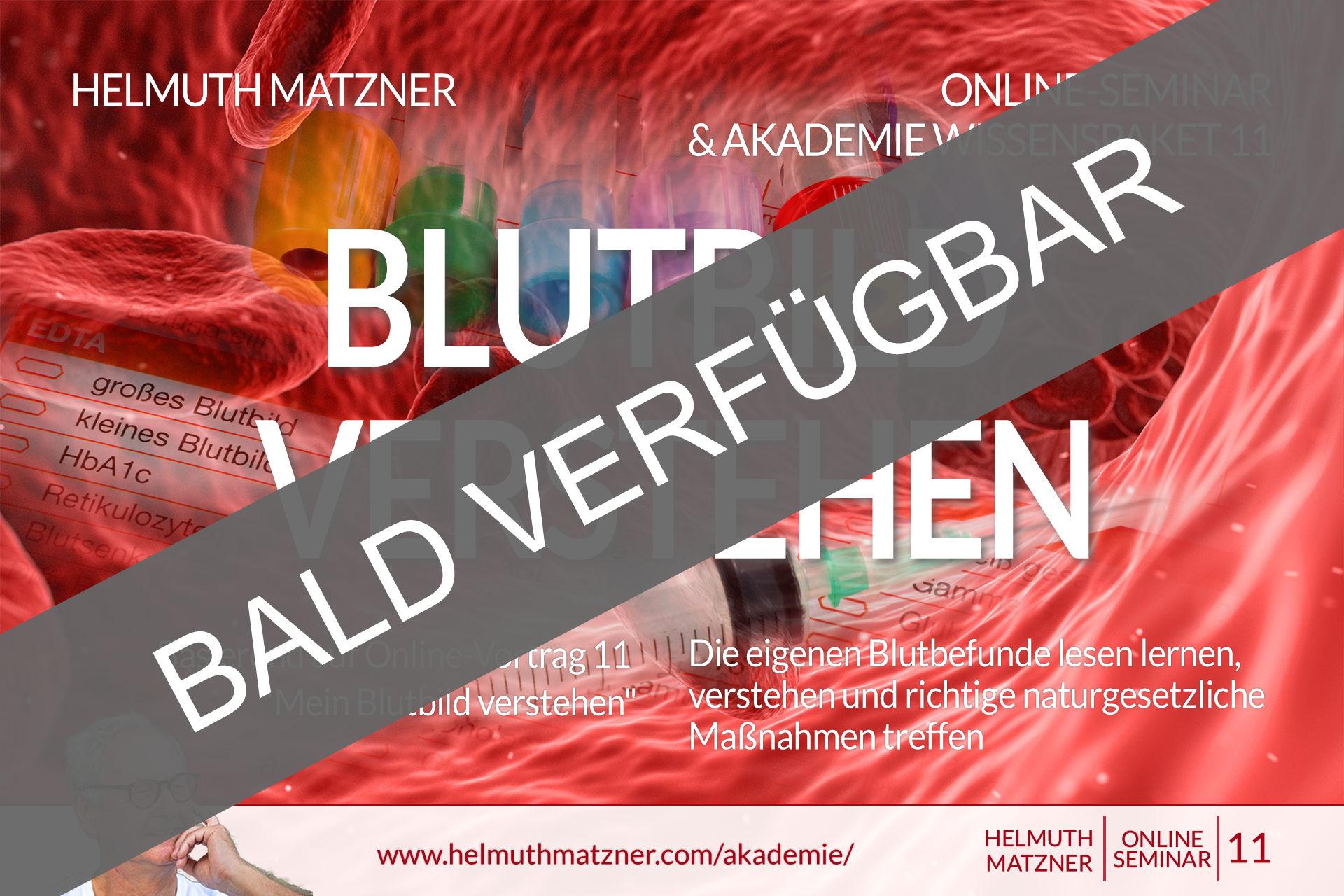 Helmuth Matzner - Masterclass & Akademie Wissenspaket 11 - Blutbild Verstehen - Akademie v05B