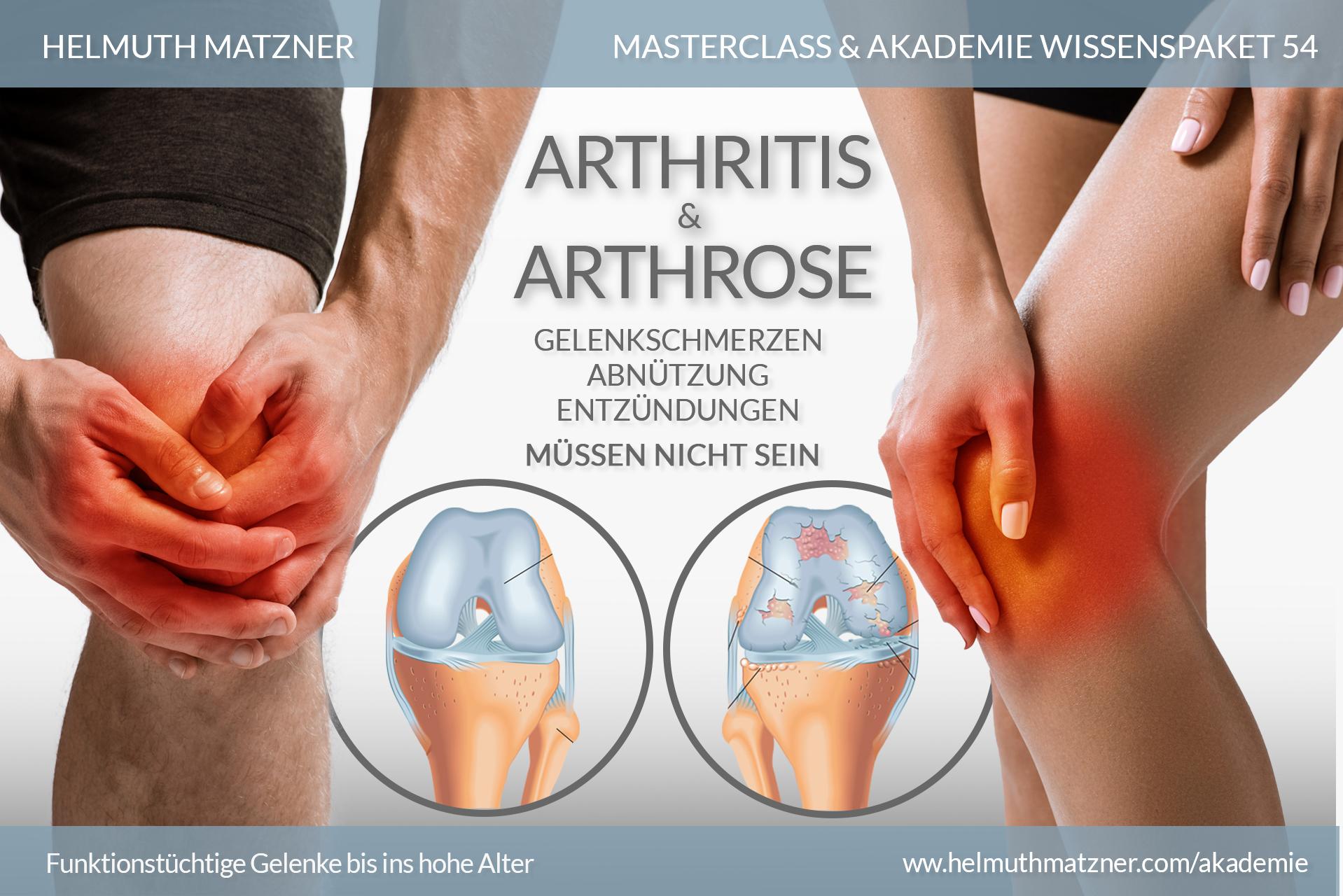 Helmuth Matzner - Masterclass & Akademie Wissenspaket 54 - Arthritis Arthrose - AKADEMIE - v01