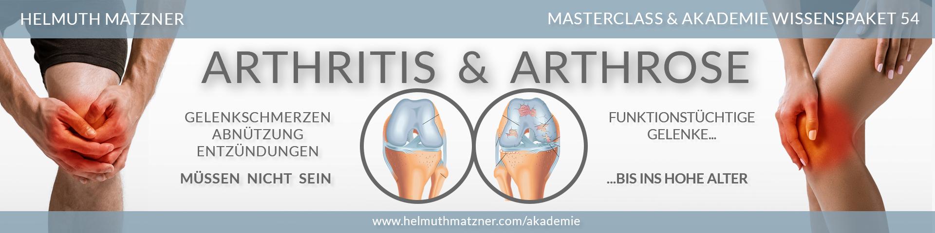 Helmuth Matzner - Masterclass & Akademie Wissenspaket 54 - Arthritis Arthrose - LP-BANNER v02