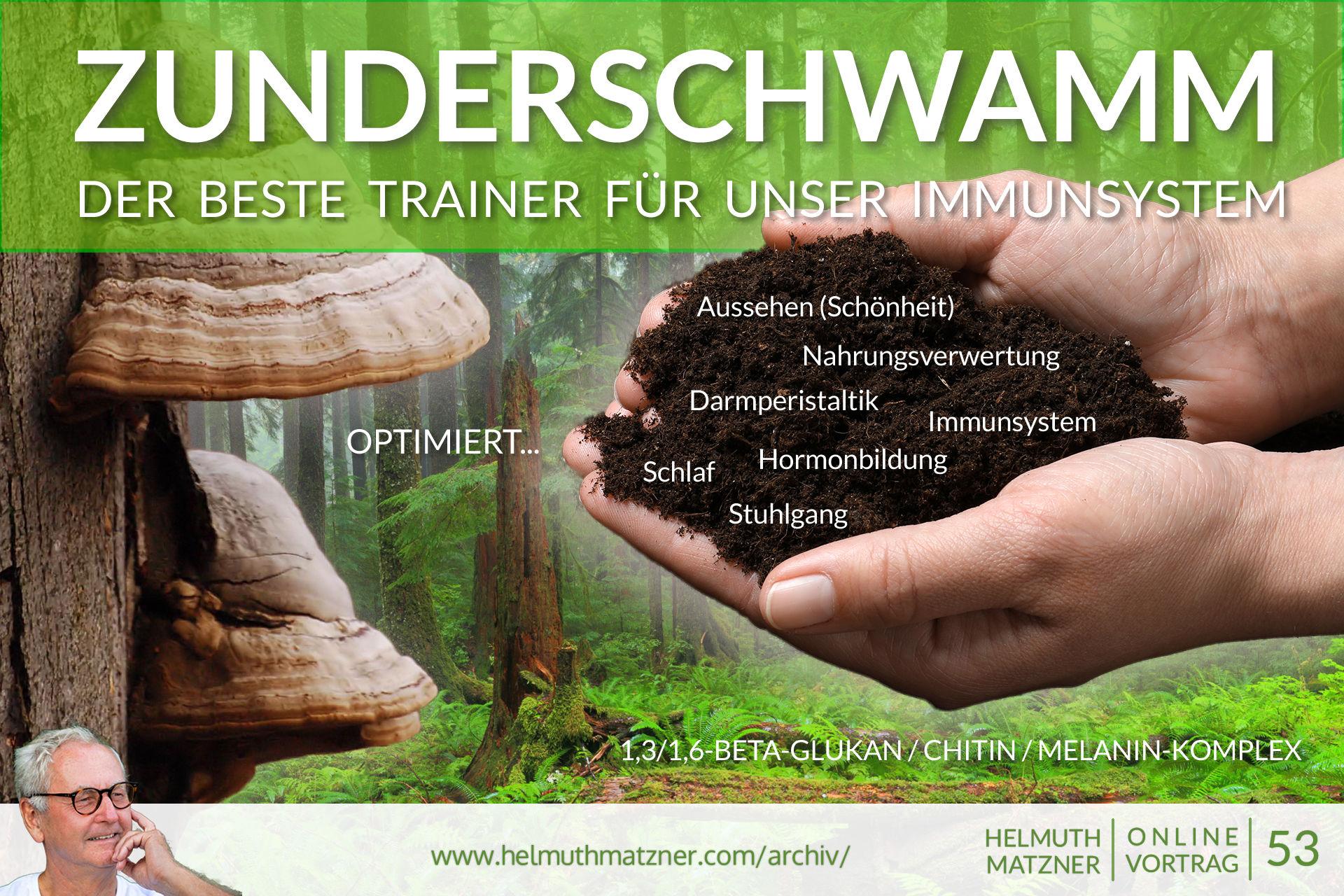Helmuth Matzner - Online-Vortrag 53 - Zunderschwamm - Archiv v05B